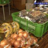 BBQコート339 – 京都テレビ「おやかまっさん」にてご紹